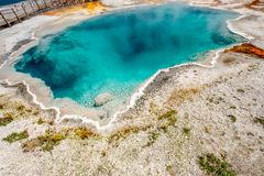 Sorgente termale calda in Yellowstone Fotografia Stock Libera da Diritti