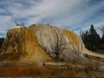 Sorgenti dello zolfo del Yellowstone Immagini Stock