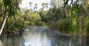 Sorgenti di acqua calda australiane Fotografia Stock