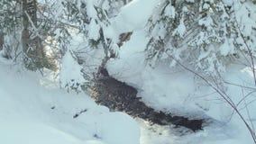Sorgenti termali dei precedenti dell'inverno archivi video