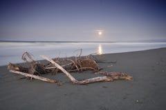 Sorgere della luna della spiaggia di Ohope, Nuova Zelanda Fotografia Stock