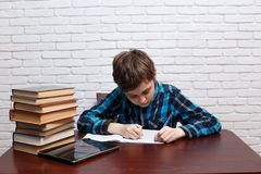 Sorgfältiger Schüler, der eine Aufgabe in ein Notizbuch notiert Elementa stockfotografie