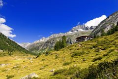 Sorgfalt-Alt - Adamello Trento Italien Stockbilder