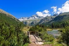 Sorgfalt-Alt - Adamello Trento Italien Lizenzfreies Stockfoto