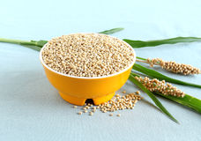 Sorghum in a Bowl Stock Photos