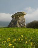 Sorginetxe dolmen. In the plains of Alava Royalty Free Stock Photography