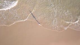Sorgloses Mädchen durch das Meer stock video