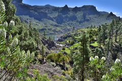 Soria, Gran Canaria royalty-vrije stock afbeelding