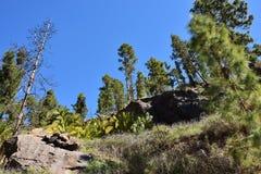 Soria scenery, Gran Canaria. Soria mountain landscape in Gran Canaria island. Canary island. Spain Stock Image