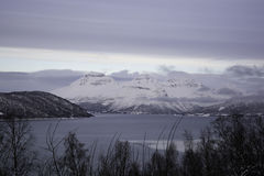 Sorkjosleira Fjord, Troms, Norway. The Sorkjosleira Fjord near Markenes in the region Troms in Norway in winter royalty free stock photography
