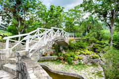 The Soroa Orchid Botanical Garden in Cuba Royalty Free Stock Photo
