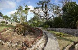 Soroa Orchid Botanical Garden, Pinar del Rio, Cuba.  stock photo