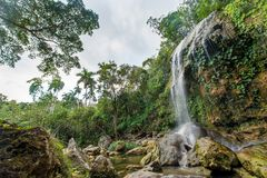 SOROA-VATTENFALL, toppig bergskedja Rosario Biosphere Reserve Arkivfoto