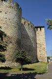 Soroca forteca Obraz Royalty Free