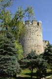 Soroca fortress. Moldovan fortress of XV century, the city Magpies Stock Photo