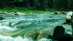Sorprendiendo, el río salvaje de la montaña magnífica, rápida, pedregosa corre en el bosque verde denso almacen de video