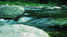 Sorprendiendo, el río salvaje de la montaña magnífica, rápida, pedregosa corre en el bosque verde denso metrajes