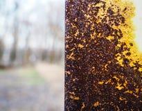 Sorprendiendo, textura oxidada colorida Fotos de archivo