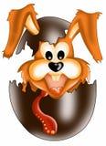 Sorpresa del conejo Fotografía de archivo libre de regalías