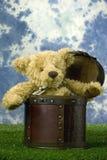 Sorpresa del oso Imagen de archivo