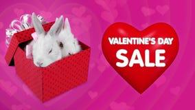 Sorpresa di caduta del contenitore di regalo sulla vendita di giorno di biglietti di S. Valentino, coppia divertente dei coniglie illustrazione di stock