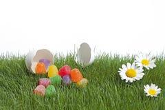 Sorpresa di Pasqua Immagine Stock