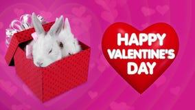 Sorpresa feliz del día de tarjetas del día de San Valentín, actual caja que cae con los conejos blancos stock de ilustración