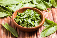 Sorrel in a bowl. Fresh green sorrel in a wooden bowl Stock Photo