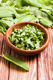 Sorrel in a bowl. Fresh green sorrel in a wooden bowl Stock Images