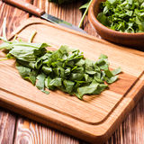 Sorrel in a bowl. Fresh green sorrel on a wooden board Stock Images