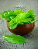Sorrel in brown ceramic bowl. On a wooden table Royalty Free Stock Photography