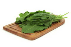 Sorrel on a cutting board Stock Image