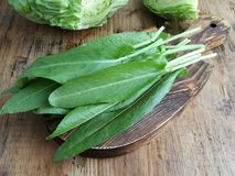 Sorrel on a cutting board. On the background of a head cabbage royalty free stock photography