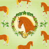 Sorrel horse  head of stallion hunting theme vector Royalty Free Stock Images