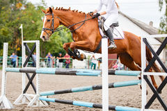 Sorrel horse with rider jumping over obstacle. On show jumping competition Stock Photography