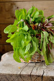 Sorrel leaves in a basket. On a wooden table Royalty Free Stock Photography