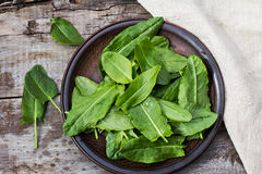 Sorrel leaves on a plate. The plate is on the old boards Royalty Free Stock Images