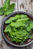 Sorrel leaves. On a plate, the plate is on the old boards Royalty Free Stock Image