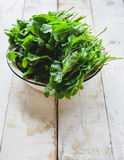Sorrel in a metal plate. Freshly picked sorrel in a white metal plate Stock Photography