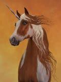 Sorrel Pinto Unicorn stock illustratie