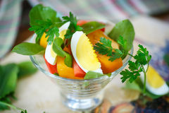 Sorrel salad and tomatoes with egg. Sorrel salad with eggs and tomatoes and herbs royalty free stock photos