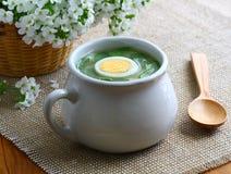 Sorrel soup. Royalty Free Stock Photos