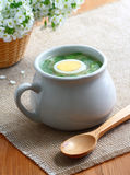 Sorrel soup. Stock Images