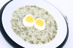 Sorrel soup. With an egg royalty free stock image