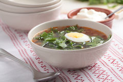 Sorrel soup Stock Photos