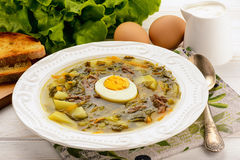 Sorrel soup with boiled egg - dish of russian cuisine. Sorrel soup with boiled egg - dish of russian cuisine royalty free stock photos