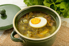 Sorrel soup with boiled egg - dish of russian cuisine. Sorrel soup with boiled egg - dish of russian cuisine stock photography