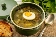 Sorrel soup with boiled egg - dish of russian cuisine. Royalty Free Stock Images