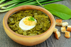 Sorrel soup with egg. In bowl on the wooden table Stock Photography