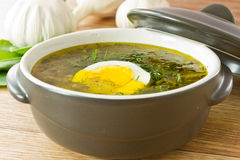 Sorrel soup. With egg and greens in a plate stock photography